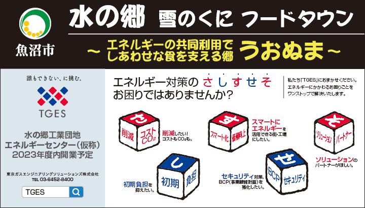 東京ガスエンジニアリングソリューションズ株式会社
